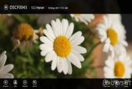 picasa photo viewer download